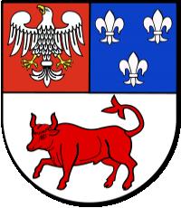 Powiat Turecki